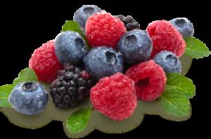 berries_001